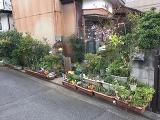 神奈川県横浜市港北区日吉本町3丁目の物件画像